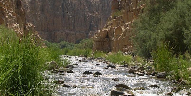 Discover Wadi Mujib