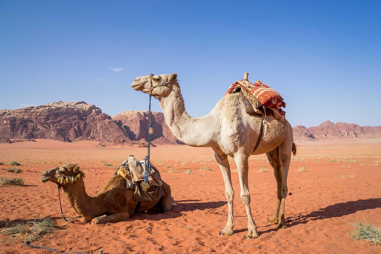 Visit Wadi Rum for your perfect Jordan vacation