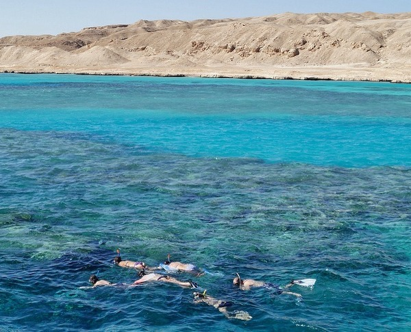 Red Sea Eilat snorkel Aqaba